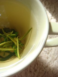 Easy Peasy Organic | recipes to change your world : Rosemary Shampoo and Shower Gel