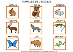 Animales Del Bosque Forest Animals, 1 Decembrie, Activities For Kids, Comics, Social, Spanish, Teacher, Art, World