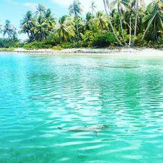 Polinesia low cost: il viaggio delle meraviglie Tahiti, Snorkeling, Trekking, Costa, Surf, Waves, Outdoor, Tourism, Culture