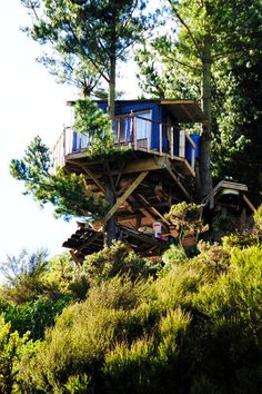 The Best Hut Treehouse. A treehouse made up of recycled materials and construction site discards. The treehouse has a fire heated outdoor bath! Located in New Zealand.[[MORE]]