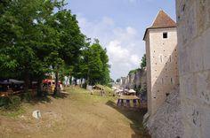 Remparts, Fête Médiévale de Provins - 2010