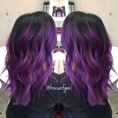 Violeta                                                       …