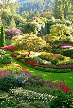 Portrait photo of Butchart Gardens, Vancouver Island Amazing! Portrait photo of Butchart Gardens, Vancouver Island Famous Gardens, Amazing Gardens, Beautiful Gardens, Beautiful Flowers, Beautiful Places, Magic Garden, Dream Garden, Garden Art, Garden Design