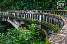 Bridge along Hana Highway