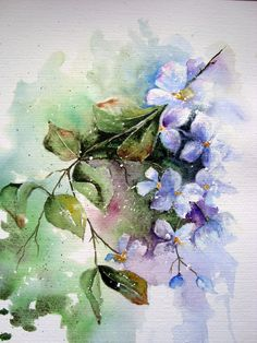 Watercolour Florals ...this website has lots of good tips through out on how to paint watercolors