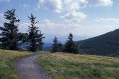 The Roan Highlands and Appalachian Trail: DonaldHyatt.com  #ExpediaWanderlust