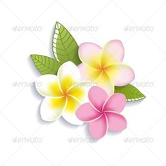 Buy Plumeria Flowers by yulia_lavrova on GraphicRiver. Vector plumeria flowers isolated on a white background Frangipani Tattoo, Plumeria Flowers, Lilies Flowers, Flowers Garden, Exotic Flowers, Tropical Flowers, Beautiful Flowers, Purple Flowers, Stickers