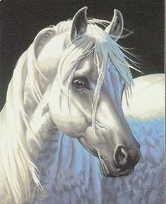 Details about 2015 New Acrylic paint by number 16*20 kit White Horse DIY PBN