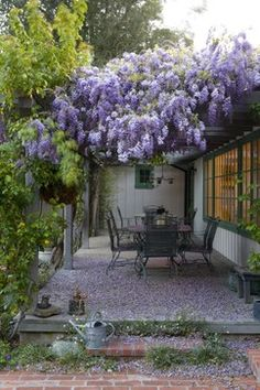Wisteria waterfall. | Image via: Houzz