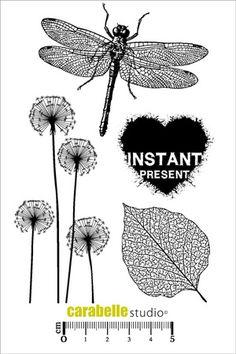 Tampon : Instant présent - Art Stamp