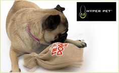 This toy will drive your pup wild! It's only $18 and includes free shipping :)