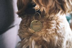 Brass dog ID and name tag hand stamped by Animals In Charge. Lovingly handmade goods for your animal. Custom Dog Tags, Custom Dog Collars, Puppy Names, Pet Names, Dog Collar Tags, Dog Id Tags, Pet Id, Stainless Steel Earrings, Large Dogs