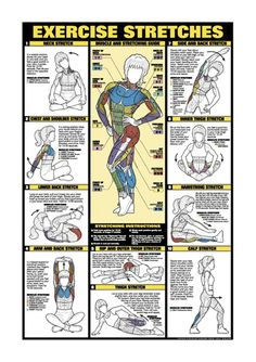 "Exercise Stretch Chart with 10 stretches for various muscles including calf, neck, shoulders and more. 11""x16"" Laminated $10.35"