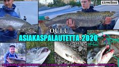 Oulu Kalastus - Salmon Fishing - Merikoski. RiverBug Putkiperhojen asiakaspalautteita. #oulujoki #merikoski #merijalinranta #kuuska #cityfishing #tiura #putkiperhot #perhonsidonta #lohiperhot #lohenkalastus #saalisklubi #miniperhot #mustaperho #salmon #salmonfinland #kalastus #kalastussuomi #fishingfinland #tubefly #tubfluga #tubefluer #tubenfliegen #lachs #lohi #salmon #bigfish #bigsalmon #mustakettu #esanerikoinen #cityfishing #oulu #ouluperhonsidonta #riverranger #riverbugfinland #shop…