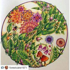 😍Apaixonada pelos efeitos lindos desse colorido de @forestcake1971  #repost #desenhoscolorir #florestaencantada #enchantedforest #johannabasford  #jardimsecreto