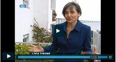 """Livia Tirone participou no programa """"O NOSSO TEMPO"""" da RTP 1, dedicado ao fenómeno crescente que são os jardins e hortas urbanas. http://www.rtp.pt/programa/tv/p29452/e8"""