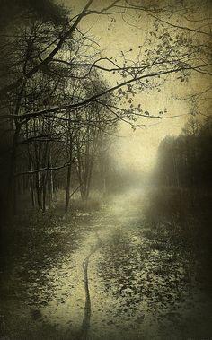 Untitled by Yaroslav Gerzhedovich, via Flickr