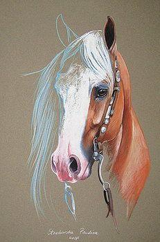 Palomino horse by Paulina Stasikowska