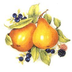 Fruit - Rich Colors - Pears, Blueberries, Raspberries