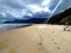 Tasmania's South Coast Track. Would love to travel to Tasmania.