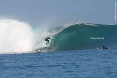 SUrf Camp Indonesia on August 31, 2015   at G-Land Surf Spot, East Java, Indonesia   more:g-land.com