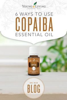 Get whisked away on an Amazonian adventure with our uses for Copaiba.