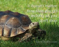 It doesn't matter how slow quotes quote life inspirational wisdom lesson