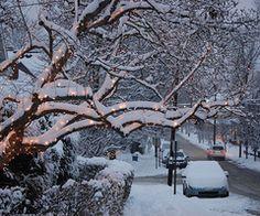 christmas, winter, holidays, lights, snow