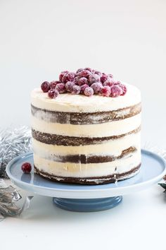 Soft Gingerbread Cake with Sparkling Cranberries - Baking-Ginger