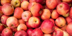 Apple orchards in Wisconsin provide seasonal delights during fall such as apple picking, scenic autumn hayrides, warm apple cider and delicious caramel apples.