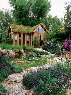 gorgeous grass roof and garden. so many big windows in this tiny house.