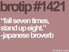 brotip 1421