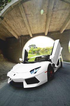 Lamborghini- ♔LadyLuxury♔