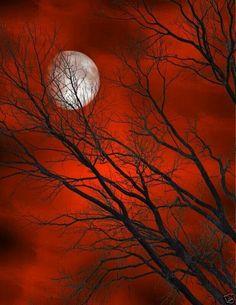Lua cheia de encantos