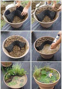 DIY Gartenidee. Einen Gartenteich zum Selbermachen, einfach mit Seerose im Blumentopf.