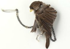 Bird brooch by Julia deVille.