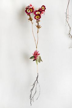Flower constructions - Anne Ten Donkelaar