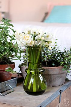 Oravanpesä | Tuulikki design Tamara Aladin, Riihimäen lasi ja perunanarsissi Narcissus 'Bridal Crown'