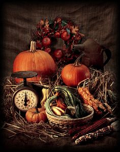 fall display - love the rich colors~