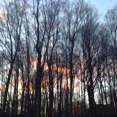 """From the Instagram of larri03: """"Sunset"""""""