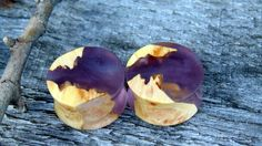 "22mm KILLER Maple burl wood set in resin ear plugs, Hand crafted unique 7/8"" gauge set of flesh plugs by MustLoveWoodPlugs on Etsy"