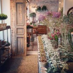"""""""Vi har fått inn så utrolig mange flotte og spennende planter!  Ut med jula, inn med våren!…"""""""
