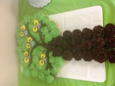 Owl cupcake cake for baby shower thanks to Kim bailey at sugar rush in Hartford for makin this!