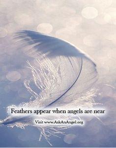 Feathers appear when angels are near. Visit www.AskAnAngel.org