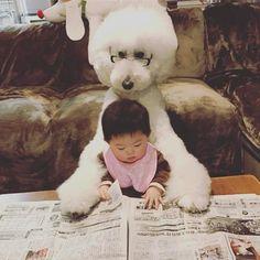 超巨大プードル×赤ちゃん=最高! かわいすぎる二人が話題に