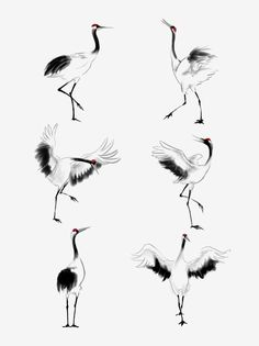 Birds Painting, Crane Drawing, Chinese Painting Flowers, Fly Drawing, Japanese Calligraphy, Japanese Tattoo Art, Art, Chinese Drawings, Ink Painting