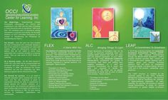 Powerful Programs to Live an Inspired, Excellent Life: FLEX and ALC - Wifely Steps