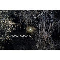 Концепция Продукта. Качественные продукты.: #лунныйсвет#луна#весна#8марта#концепцияпродукта