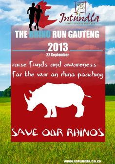 Help save our Rhinos with The Rhino Run at Intundla Rhino Poaching, Game Lodge, Watch This Space, Rhinos, Team Building, Conference, Events, In This Moment, Running