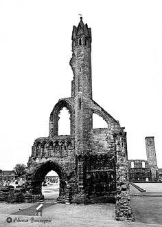 Saint Andrews Cathedral - Scotland